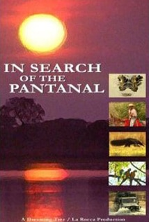 Image of In Search of the Pantanal