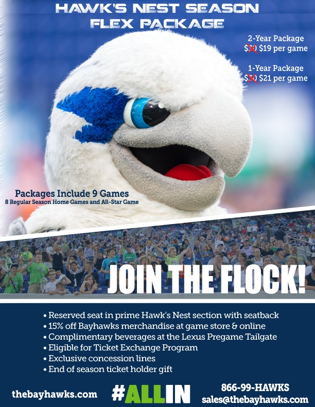2019 Chesapeake Bayhawks Hawk's Nest Season Flex Package