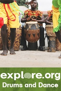Image of Drums and Dance