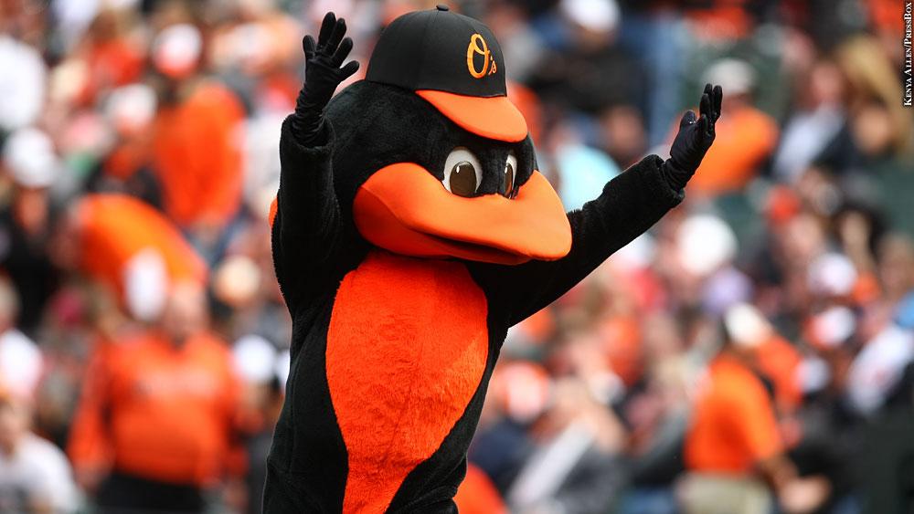 Orioles17-oriole-bird2