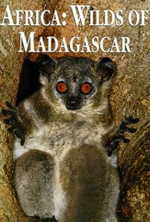 Image of Africa: Wilds of Madagascar