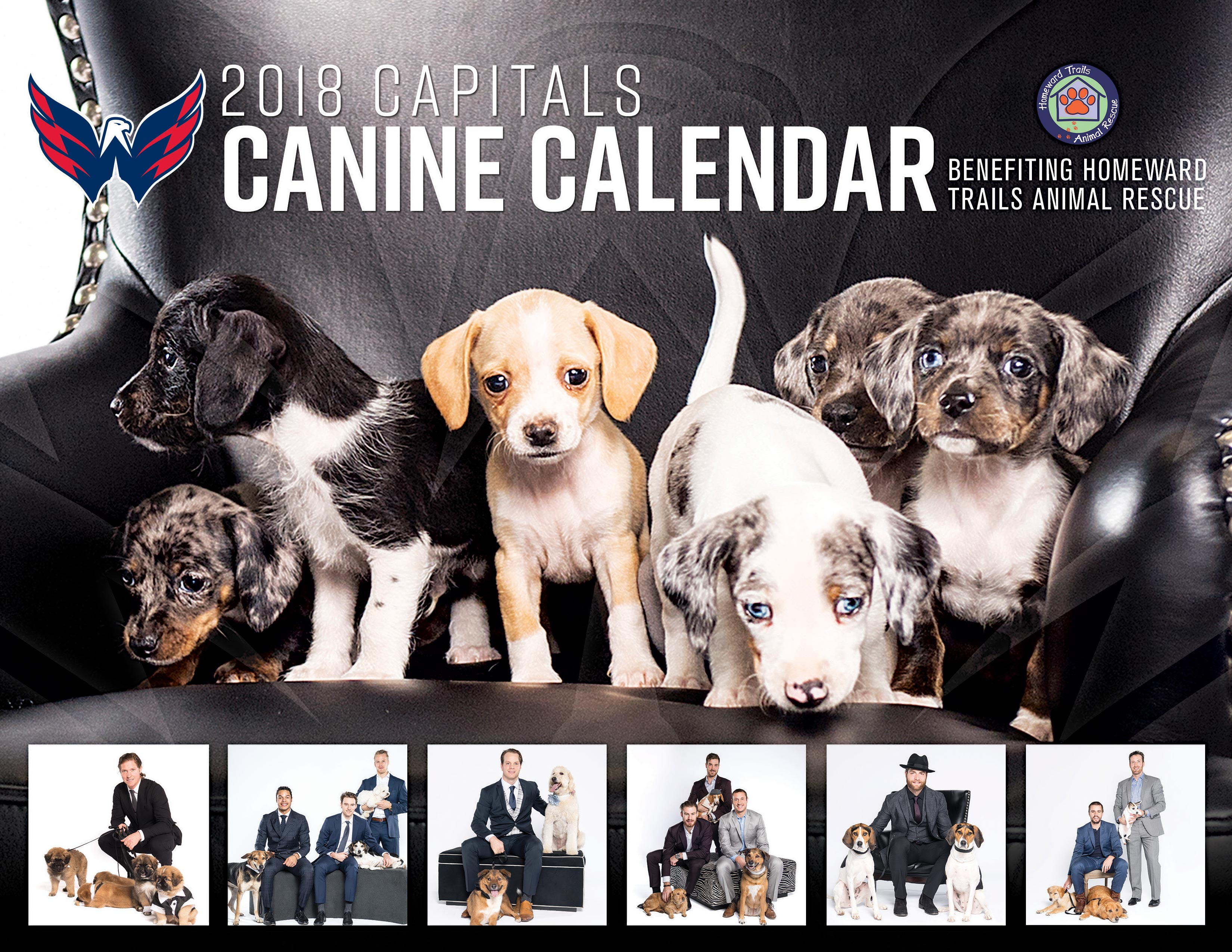 Canine-calendar-cover