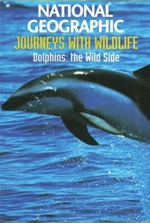 Image of Dolphins: The Wild Side