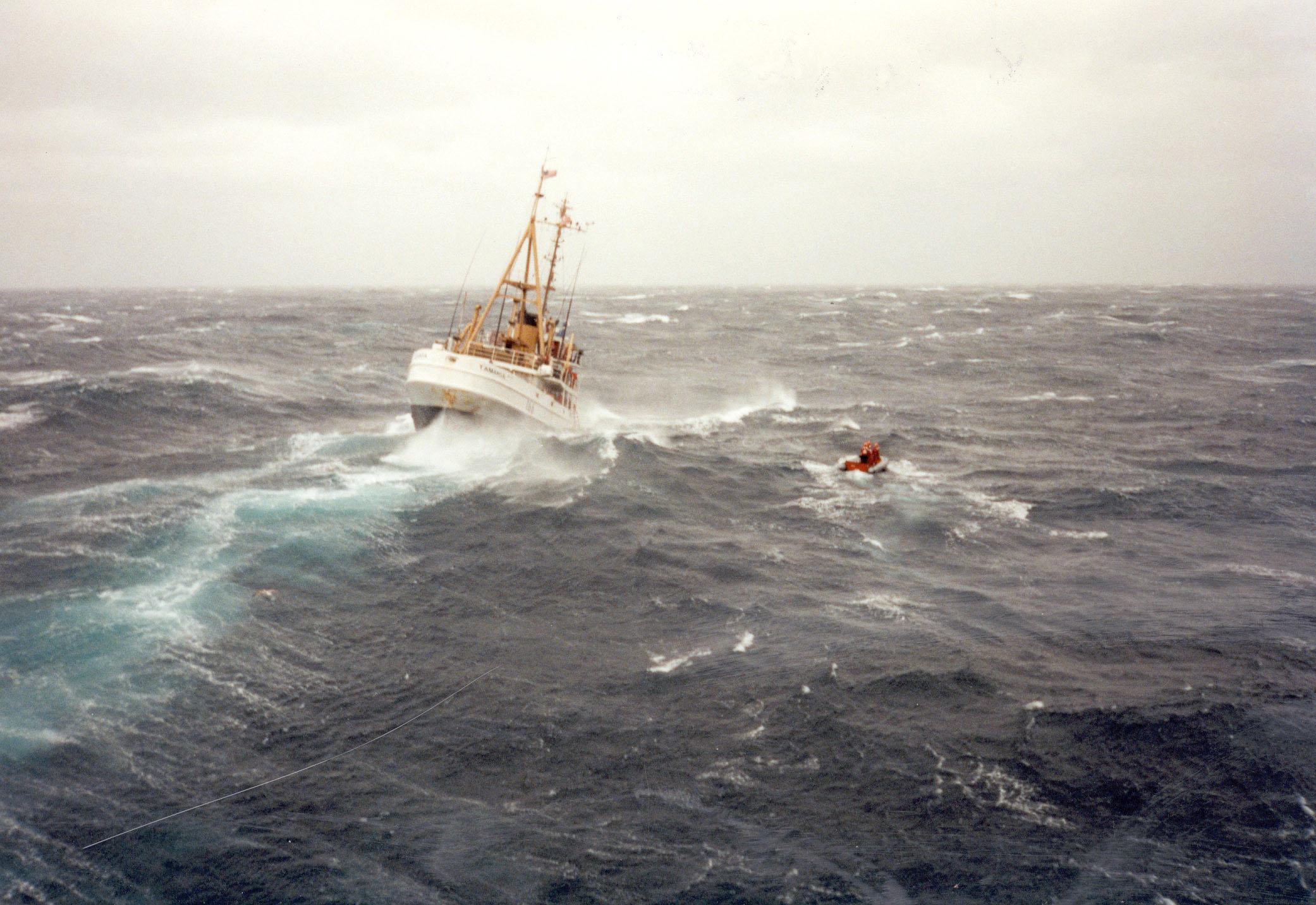 The Coast Guard cutter Tamaroa's rigid hull inflatable rescue boat,