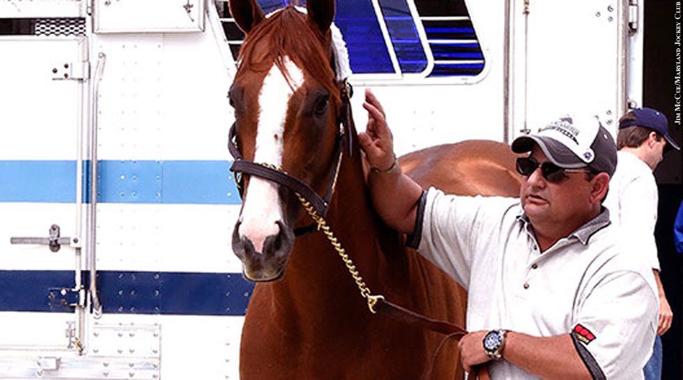 Preakness 2014: California Chrome (arrival)