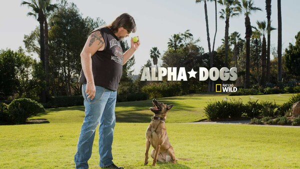 Alpha Dog (2006) - Full HD Movies to Watch Online - THEMOVIES
