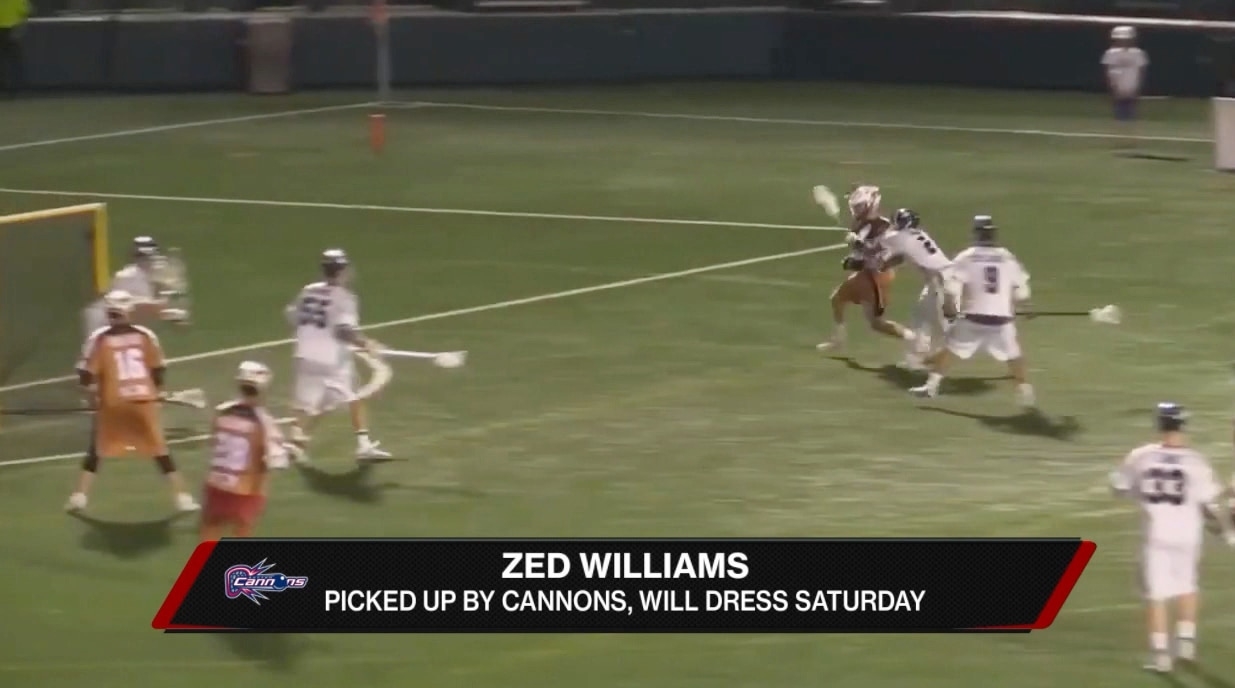 Boston Cannons Sign Zed Williams While Ryan