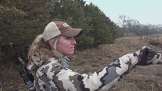 Nebraska Mule Deer