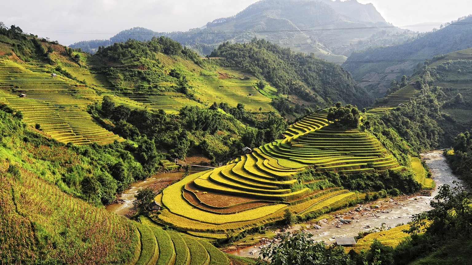 Us Area Code History%0A Southeast Asia u    Vietnam