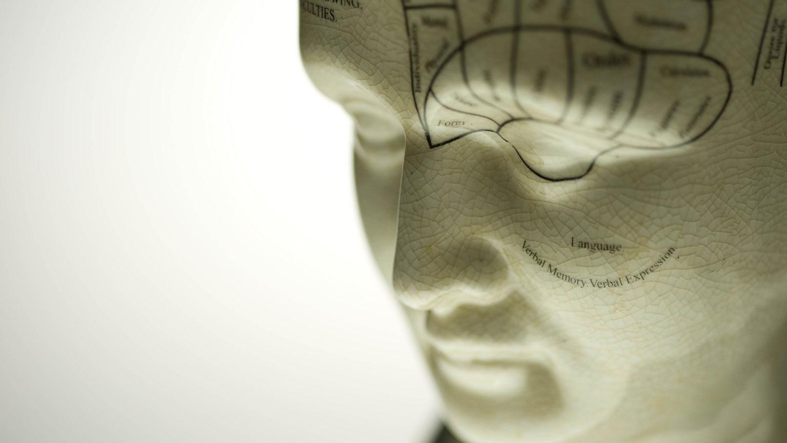 Neuroscience—Looking Back and Looking Ahead