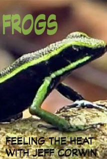 Image of Season 1 Episode 3 Frogs
