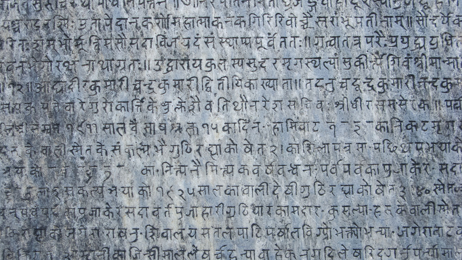 The History of Language