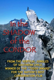 Image of In the Shadow of the Condor