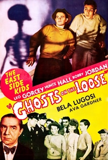 Image of Ghosts on the Loose