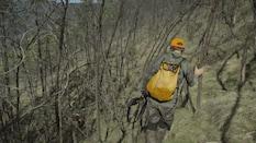 Sambar Stag Wilderness Backpack Hunt Part 1