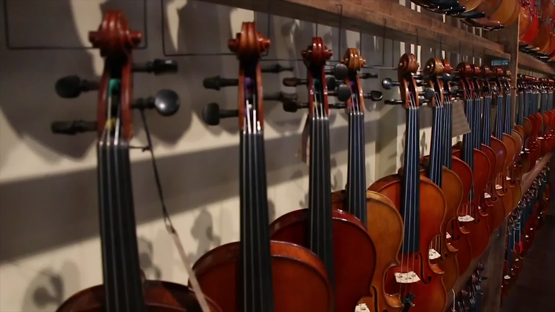 Tales of Tampa   Violin Shop Tampa   TheIdentityTB
