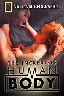 Image of The Incredible Human Body