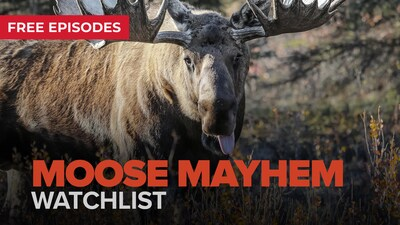 Moose Mayhem Watchlist