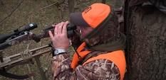 Whitetail Explorer - My Perfect Deer Hunt