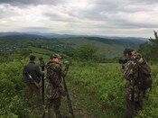 Roebuck Hunting in Romania