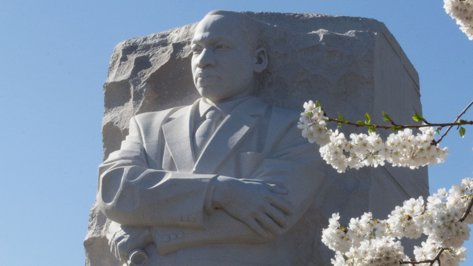Share a Vision—Martin Luther King's Dream