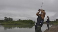 Alaskan Salmon Fishing Adventures