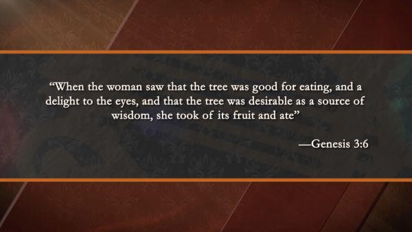 When Things Go Wrong in the Garden of Eden