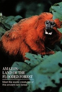 Image of Amazon: Land of the Flooded Forest