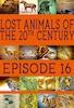 Lost Animals Part 16