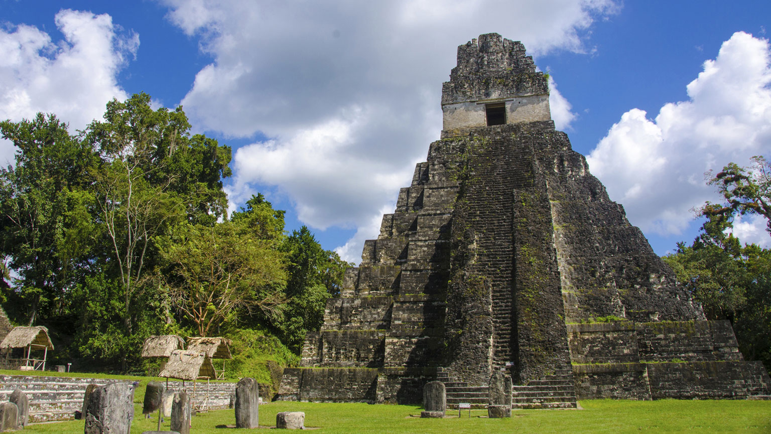 Tikal—Aspiring Capital of the Maya World