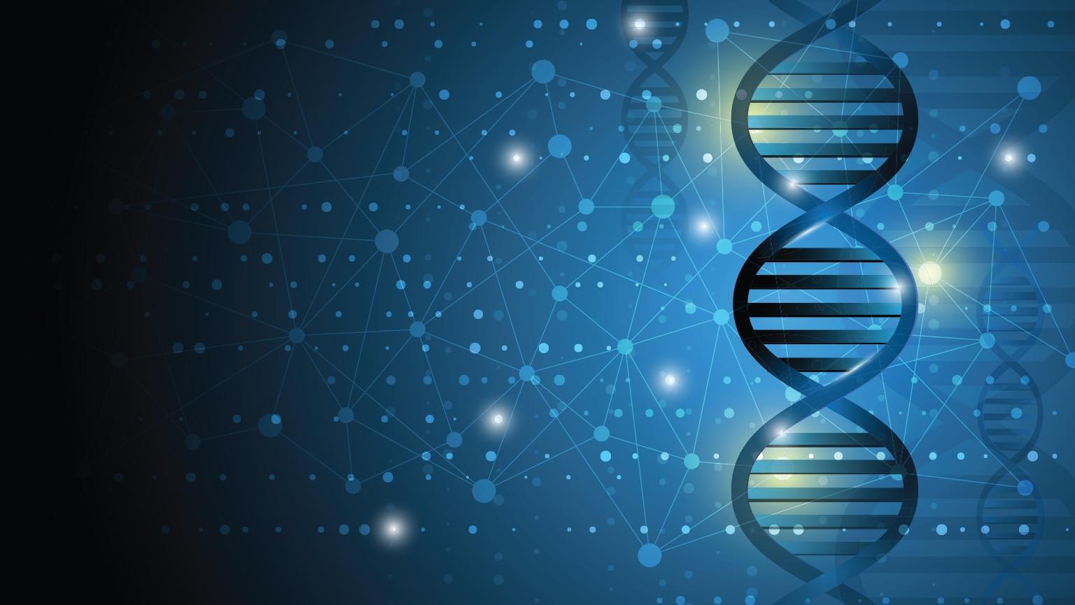 Mass—The DNA of Stars