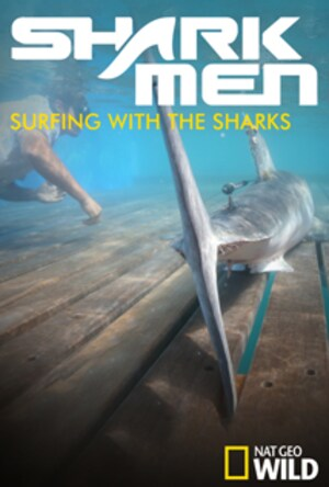Surfing with the Sharks
