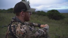 Aloha Bucks Part 1