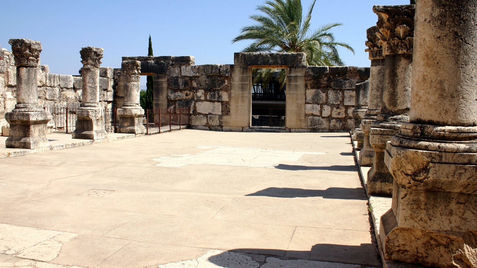 Synagogues in the Time of Jesus