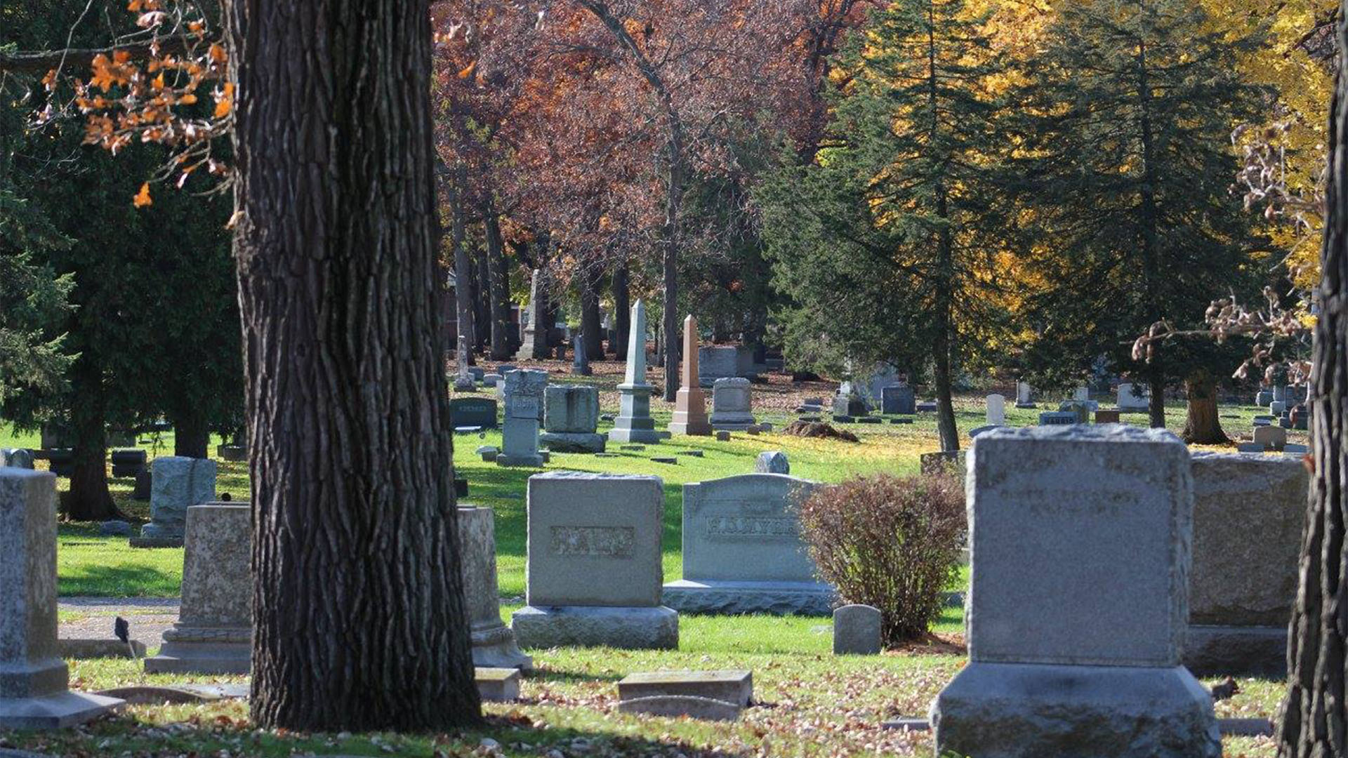 quick hits | historic tampa cemetery for sale on craigslist