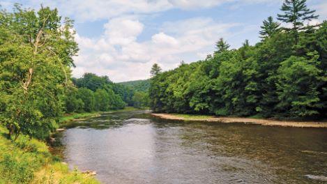 The Pennsylvania Wilds: Wilderness Reborn