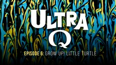 Grow Up! Little Turtle