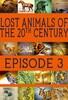 Lost Animals Part 3