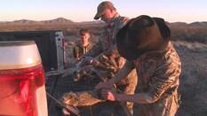 The Eichlers take on Arizona