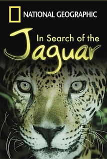 Image of In Search of the Jaguar