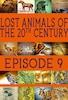 Lost Animals Part 9