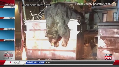How deputies deal with bears around Lake Tahoe