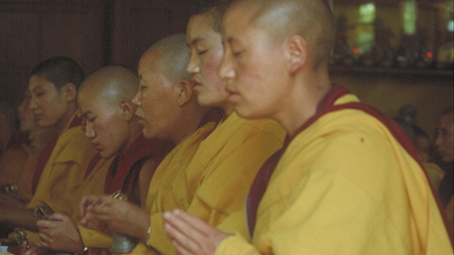 The Buddhist Monastic Community