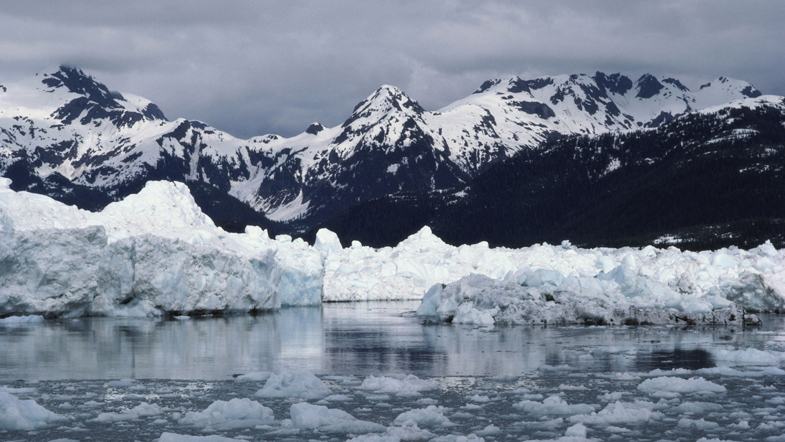 Columbia Glacier—Unusual Glacier Cycles