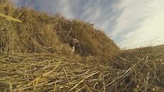 Prairie Limits