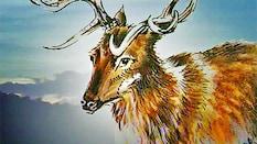 Lost Animals Part 7