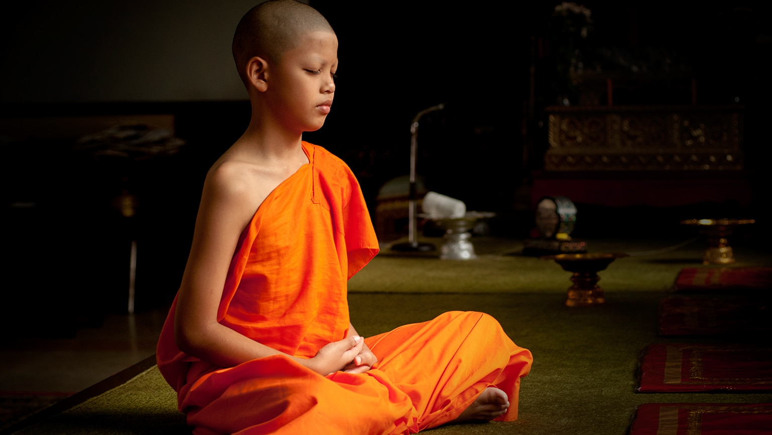Vehicles to Nirvana—The Schools of Buddhism