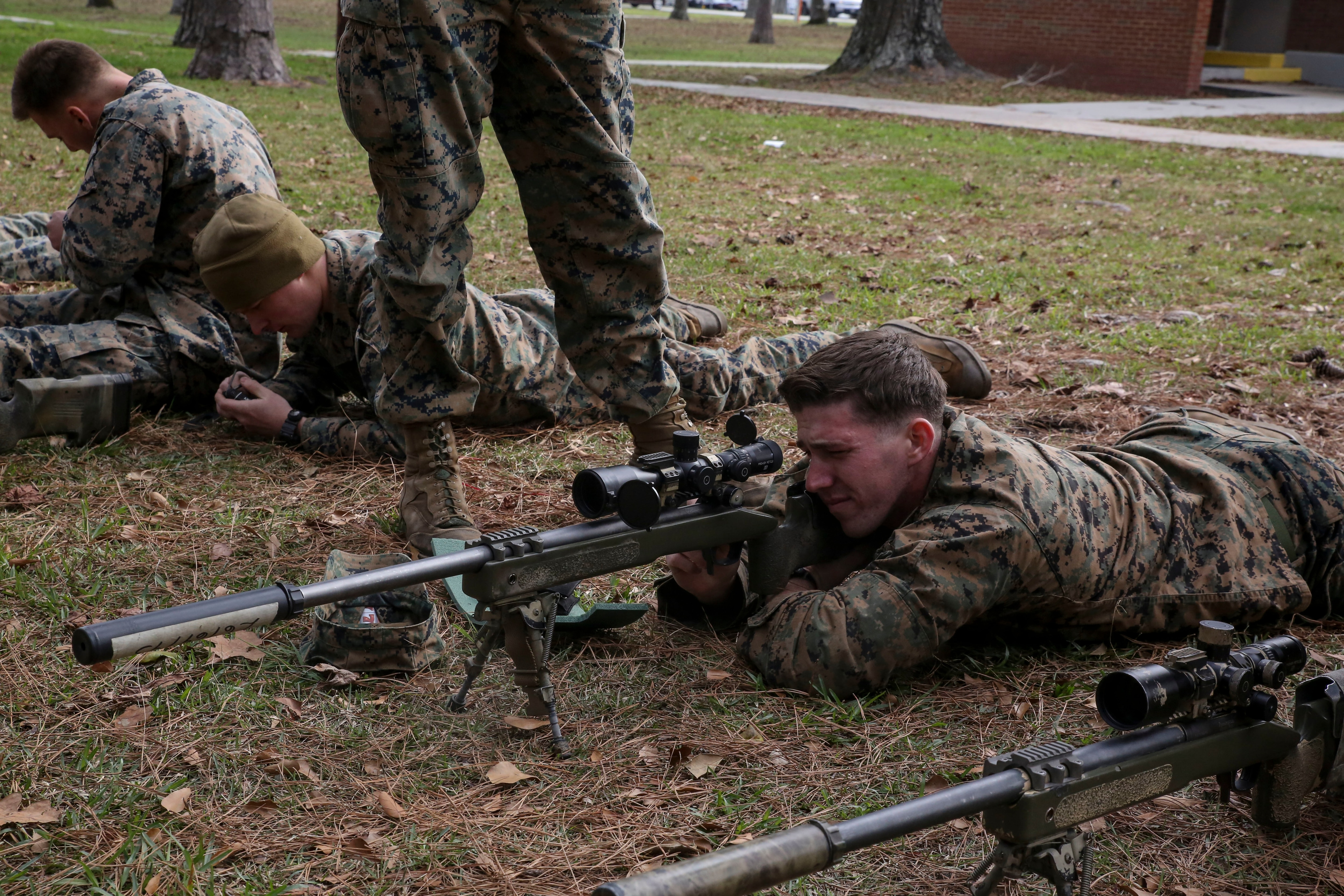 Marine Corps Scout Snipers Lexutk