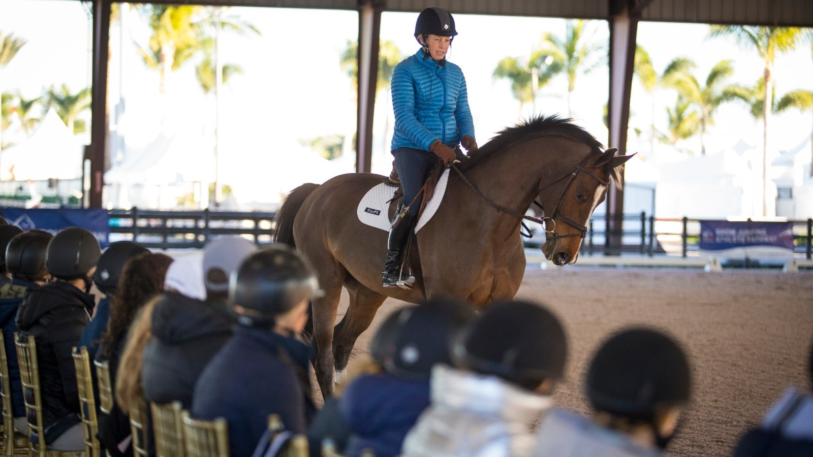 USEF Horsemastership Training Series 2021