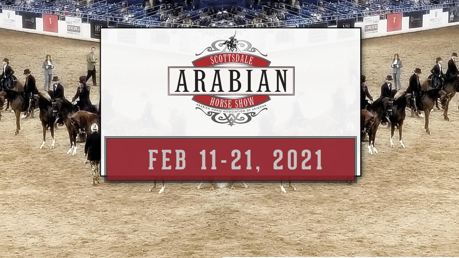 Scottsdale Arabian Horse Show, Feb 11-21, 2021